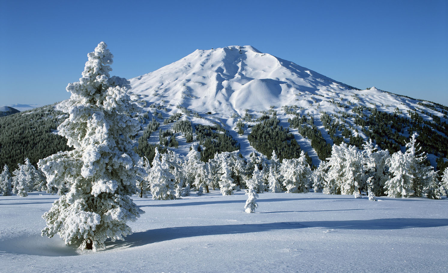 Mount Bachelor can be seen from all three of our communities — Bend, Sunriver and La Pine.