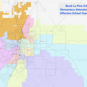 Approved_Elementary_Attendance_Areas_2019_press.png